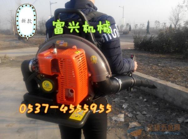 新款手推汽油抛雪机 小型汽油扫雪机 大马力扬雪机【视频】