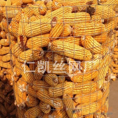 山东圈玉米网2015年报价