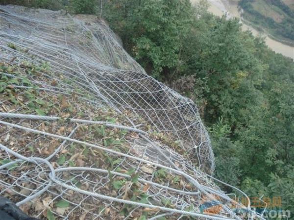 四川边坡防护网价格_布鲁克防护网厂家