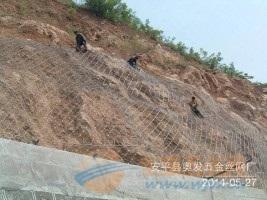 郑州绿色围栏网型号