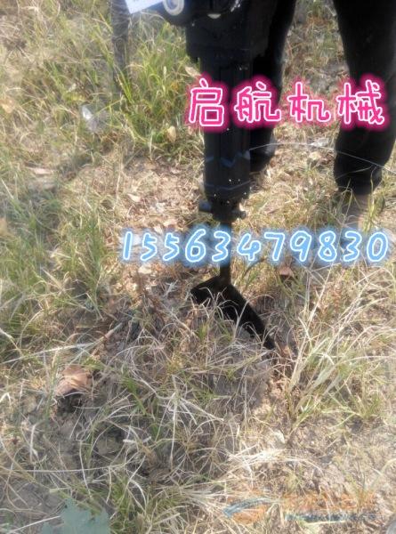 延吉市 小树苗专用移苗机 铁岭铲头式挖树机