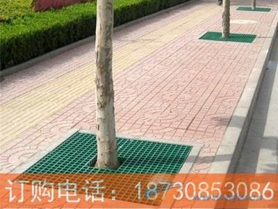 凤城不锈钢树篦子