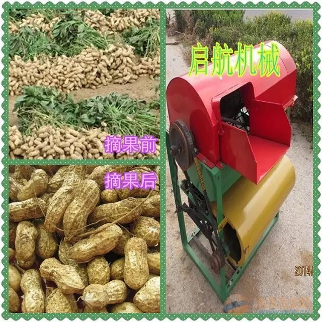 农业推荐花生摘果机清河区 果秧分离机