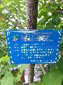专门定制求购园艺标识牌树木花卉名称标注牌