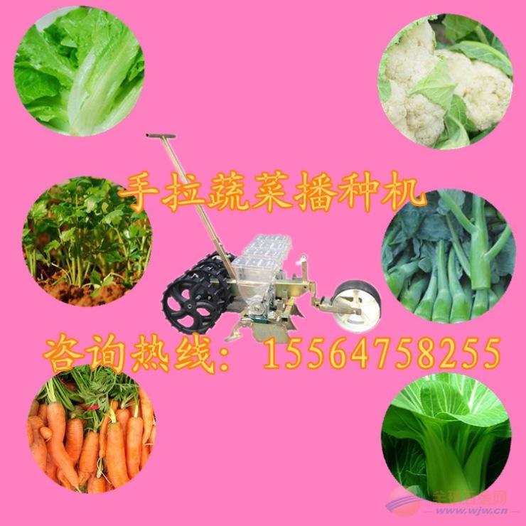 青县 高梁精播机 出苗均匀的播种机