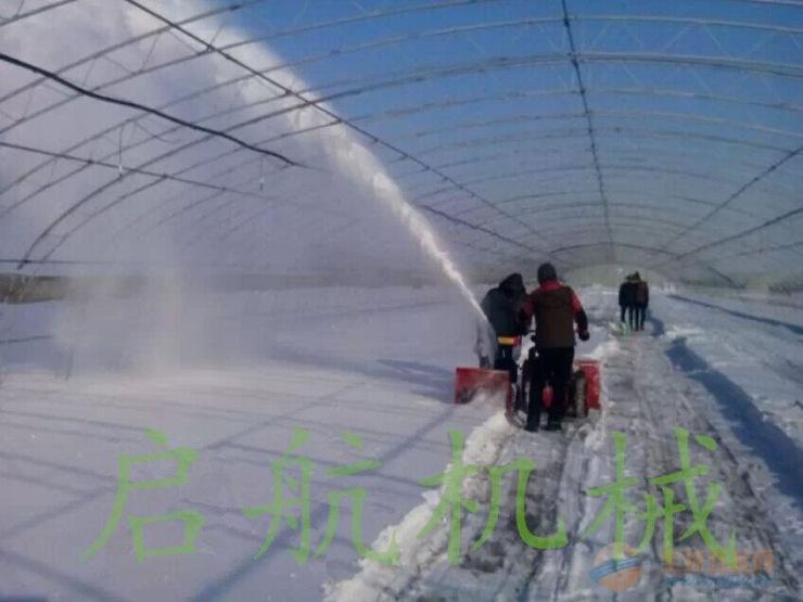 大棚吹雪机价格_菜大棚吹雪机_菜大棚吹雪机价格_菜大棚吹雪