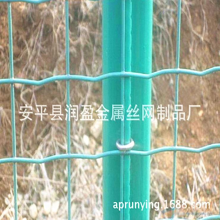 批发荷兰网 公路防护荷兰网护栏 浸塑护栏 厂家