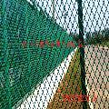 批发钢板网 小区防护用钢板网护栏 厂家直销