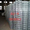 供应不锈钢电焊网 机械防护不锈钢电焊网 保温棉电焊网厂家