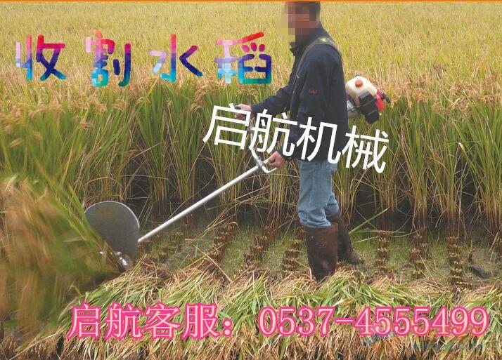 襄阳 汽油割灌机 手推式剪草机