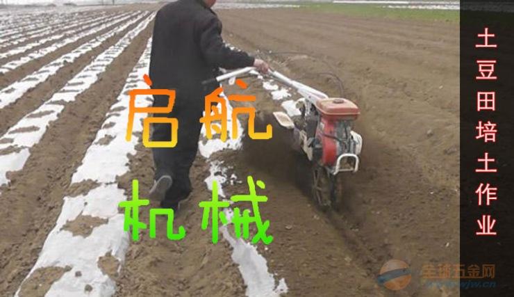 枣庄 田园管理机厂家 大姜开沟培土机厂家