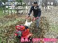山区果园专用微耕机 旋耕除草机 汽油松土机厂家