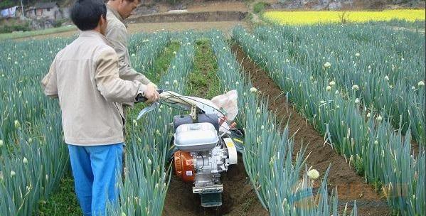 新城子区多功能开沟施肥回填机厂家报价