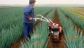 上林县履带式果园微耕机价格