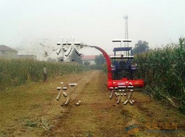 玉米秸秆收割粉碎一体机 质量优良