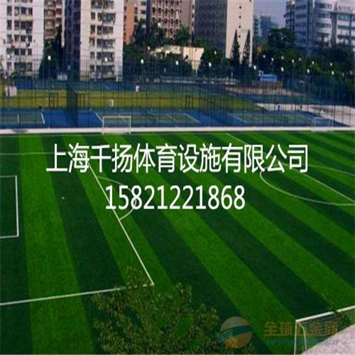 徐州人造草坪专业,施工公司