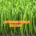 锡山人造草坪基础价格